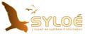 Syloé