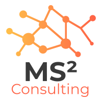 MS² Consulting